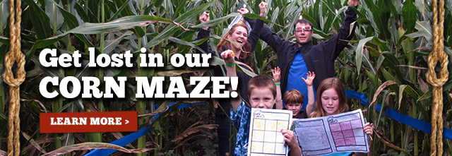 Giant Corn Maze Adventure